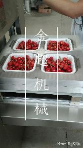 金超JC-2水果樱桃盒装气调包装机
