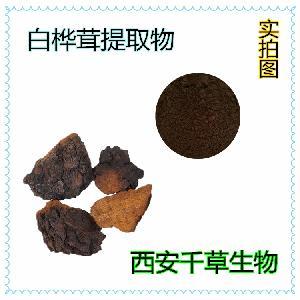 白桦茸浓缩提取粉 源头厂家 定制生产动植物提取物 浓缩流浸膏