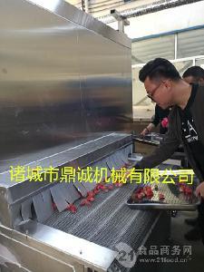 秋刀鱼速冻机--黄花鱼隧道式速冻机