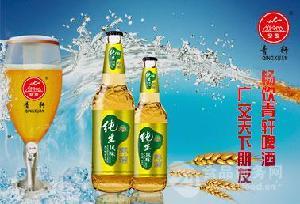 山东啤酒厂 青岛青轩啤酒各系列啤酒招商