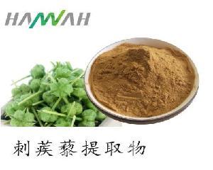刺蒺藜提取物 刺蒺藜皂甙40%-90% 优质原料粉