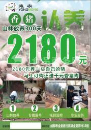 雍农农业香猪肉