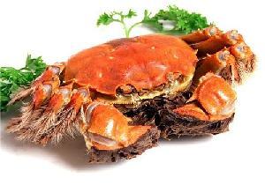 上海吃大闸蟹的地方/宝广湖大闸蟹礼券|螃蟹券团购