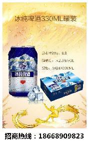 易拉罐啤酒冰纯易拉罐啤酒325毫升24听啤酒