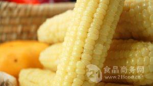 玉米果粉加工流水线