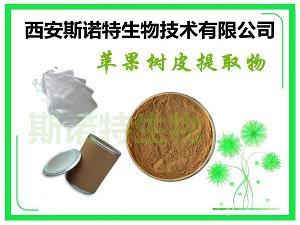 苹果树皮提取物 根皮甙 30% 根皮苷 包邮