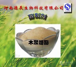 供应 木聚糖酶 植物提取物 质优价廉