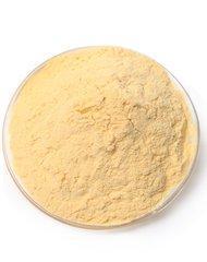 姜辣素粉    可寄样品  专业植提   姜辣素提取物