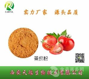 番茄粉 脱水番茄粉 西红柿粉 代餐粉 调味剂 常年供应