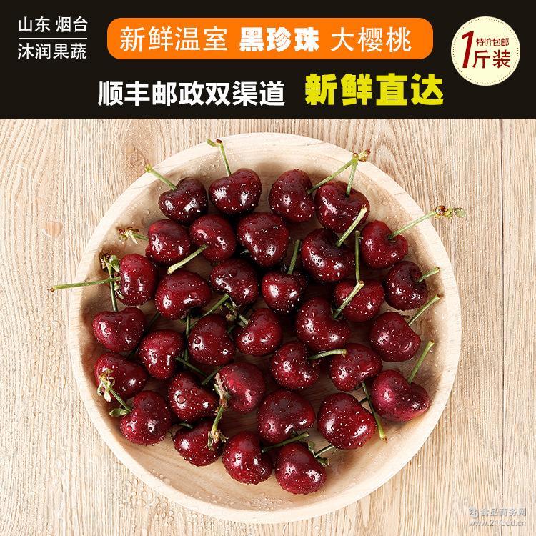 【沐润】山东温室黑珍珠樱桃现货新鲜大樱桃批发包邮支持一件代发