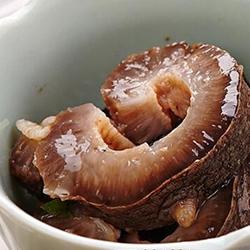 野生大连长海县鲜活海参价格多少钱一斤