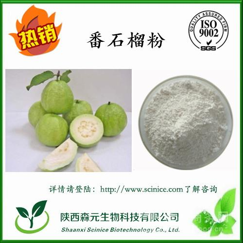 番石榴粉 99.99% 天然果蔬粉 番石榴提取物 番石榴果粉 水溶