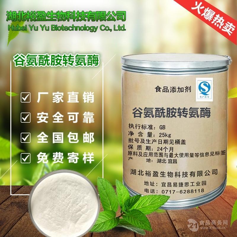 批发供应 高效食品级 谷氨酰胺转氨酶 高活力谷氨酰胺转氨酶