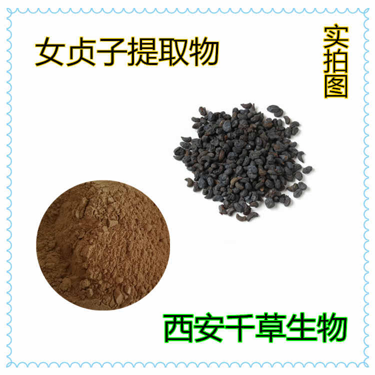 女贞子提取物 厂家生产全水溶植物提取物女贞子浓缩浸膏