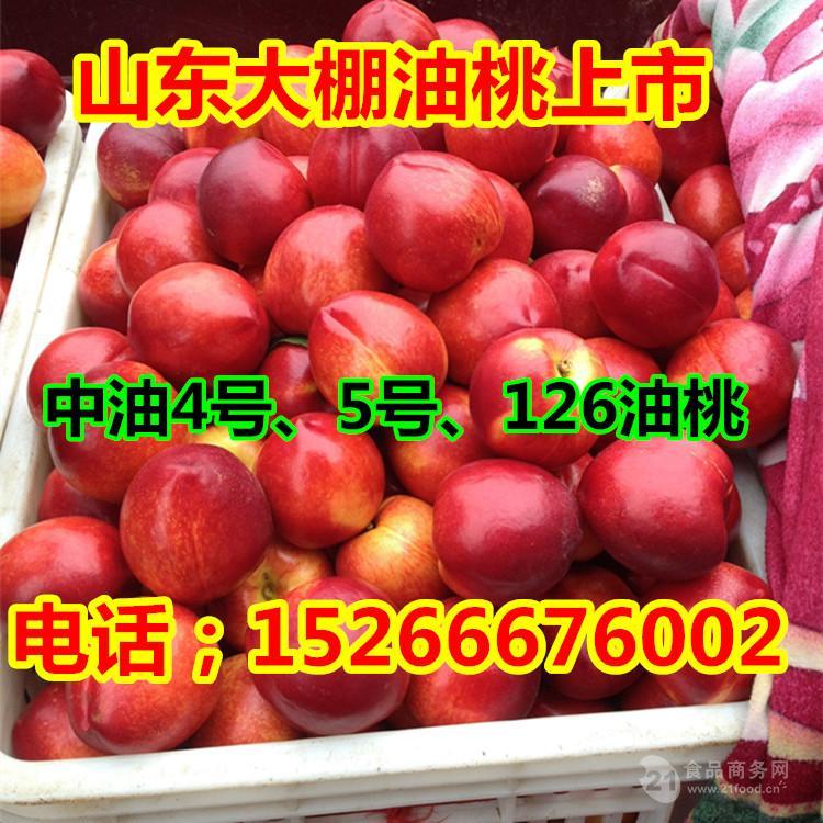 今日油桃价格大棚油桃批发价格