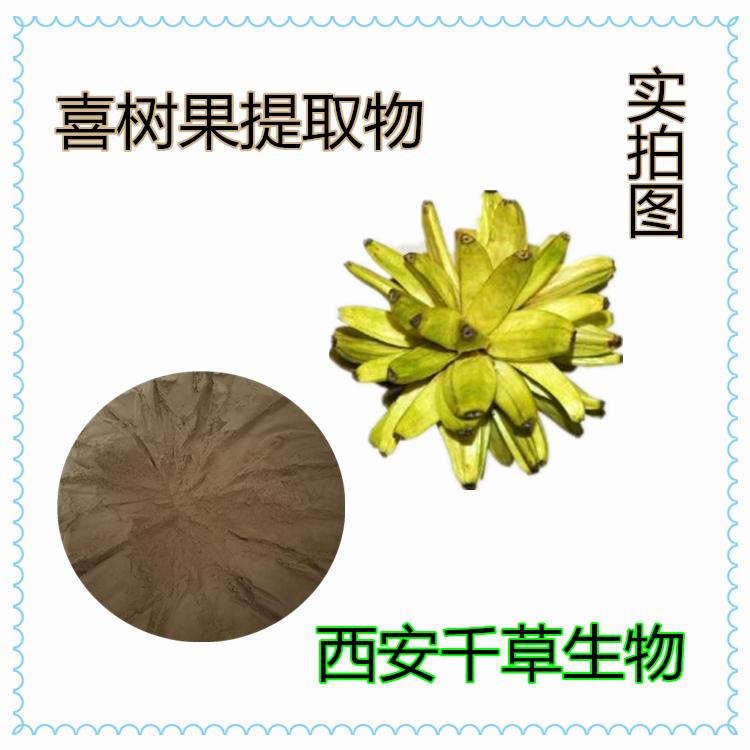 喜树果原粉 厂家定制天然提取物浓缩纯浸膏 颗粒