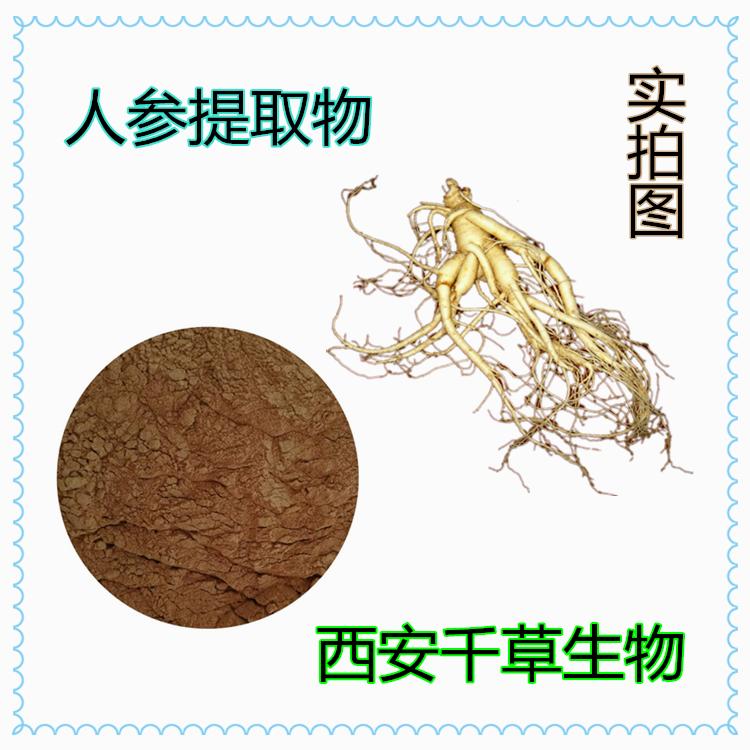 人参提取物 厂家生产动植物提取物 定做浓缩纯浸膏 颗粒