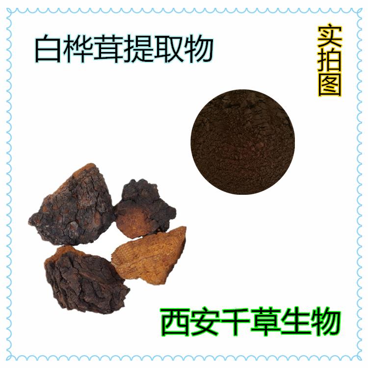 白桦茸提取物 厂家定制天然提取物浓缩纯浸膏 定做白桦茸颗粒