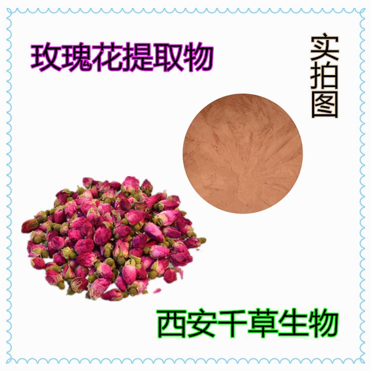 玫瑰花提取物 厂家供应天然提取物玫瑰花粉 定做浓缩浸膏