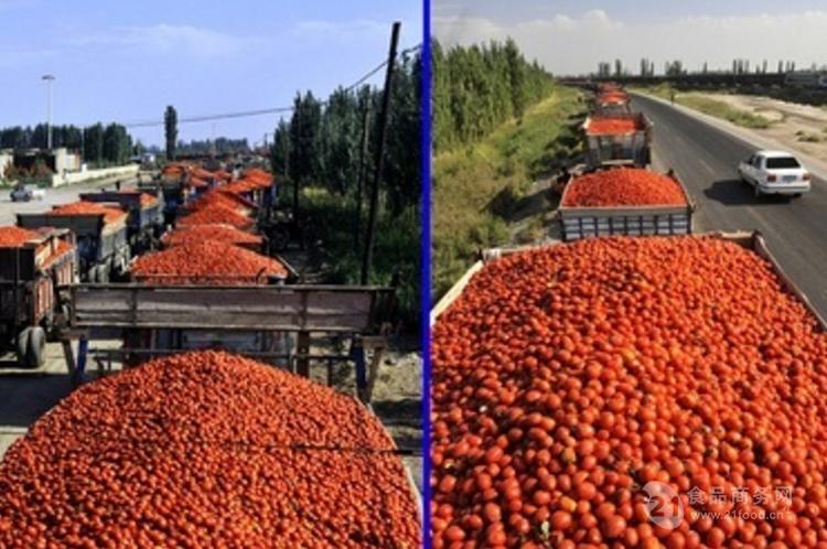 番茄酱生产线价格