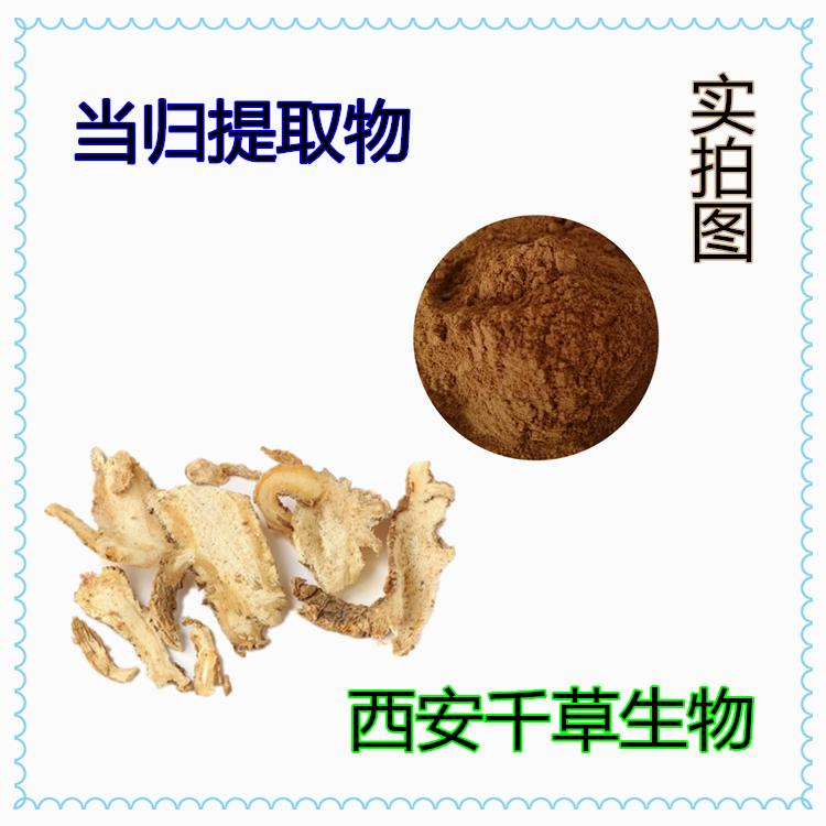 当归浓缩粉 厂家专业生产纯天然动植物提取物粉