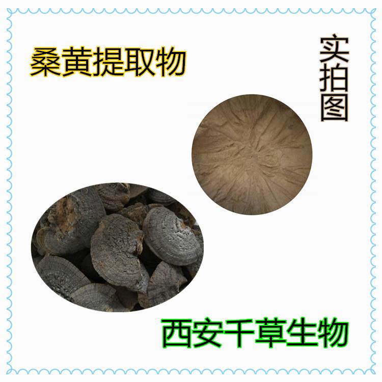 桑黄提取物 厂家生产动植物提取物 定做桑黄流浸膏 颗粒