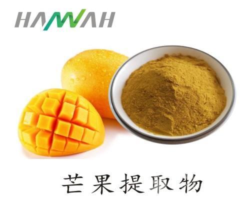 芒果粉 喷雾干燥速溶于水 芒果提取物 芒果果粉 饮料原料粉