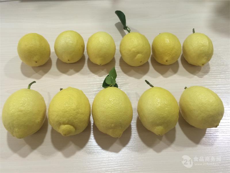 供应康柠源柠檬 大量批发 零售 新鲜采摘 产地直发 一件代发