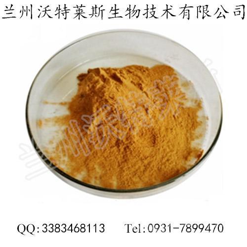 豆角提取物 豆角提取粉 刀豆提取物 现货供应 量大优惠