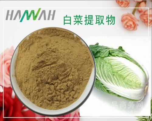 白菜提取物10:1比例 白菜粉 天然果蔬原料粉 量大优惠