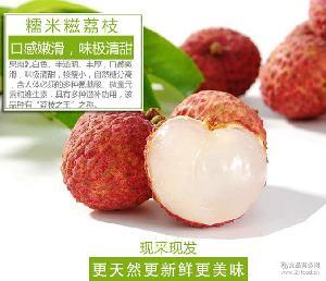 【售罄】廣東特產鎮隆荔枝糯米糍新鮮水果包郵
