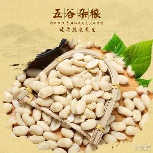 脫皮花生飽滿新鮮去皮花生米 優質脫皮花生仁袋裝25kg