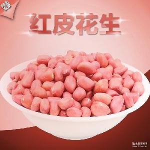 紅皮花生米500g 小包裝有機生花生米一件代發陜西榆林生花生米