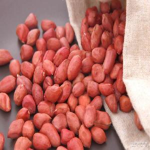 .花生米种子. .花生种子 中国花生种子湖北特产 批发