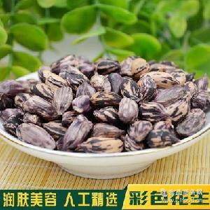 黑白彩色花生堅果種子休閑零食200g 農產品富硒 批發特產
