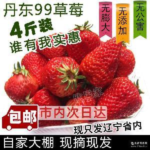 丹東九九草莓4斤包郵奶油草莓新鮮牛奶草莓現摘現賣個大好吃2000g