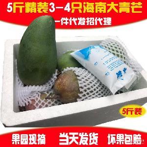 正宗越南进口芒果青皮芒新鲜水果甜多汁大青芒金煌芒5斤包邮
