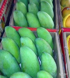 【快果萊】進口水果批發原裝越南青皮芒大青芒批發配送代發貨