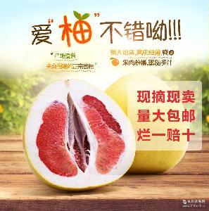 一件代發 紅心柚子 12斤4個盒裝 全場包郵 批發新鮮水果紅肉蜜柚