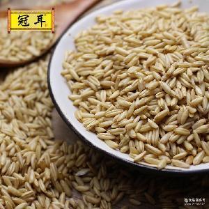 真空包裝 優質養生五谷糧油 精裝燕麥米批發 冠耳 廠家直供