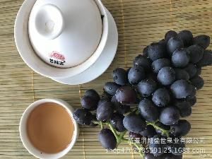 新鲜葡萄 航空落地配 【新疆】吐鲁番无核紫 批发 吐鲁番葡萄