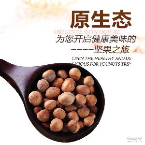 廠家現貨直銷 野生榛子 云南正宗堅果 綠色健康食品 散裝薄殼易剝
