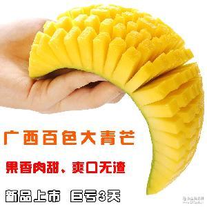 批发代销金煌芒广西大青芒8斤包邮青皮大芒果青芒果新鲜芒果水果