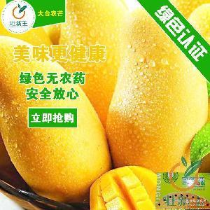 绿色食品 新鲜芒果一件代发 大小台农芒果包邮 礼盒 广西百色芒果