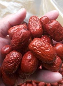 厂家直批皮薄肉厚核小 新疆 特级灰枣 绿色无公害食品
