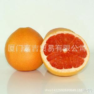 葡萄柚柚子 红心西柚 【嘉吉】新鲜水果好吃