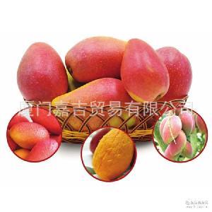 散裝 批發 10斤裝 新鮮上市 小貴妃芒 紅金龍 芒果 零售