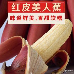 包郵 火龍蕉 紅皮美人蕉 一件代發 紅香蕉