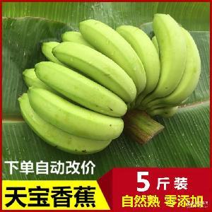 天寶新鮮香蕉水果5斤多省包郵青香蕉果園直發孕婦自