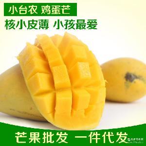 廣西百色田東芒果 一件代發10斤裝 雞蛋芒 新鮮小臺農芒包郵